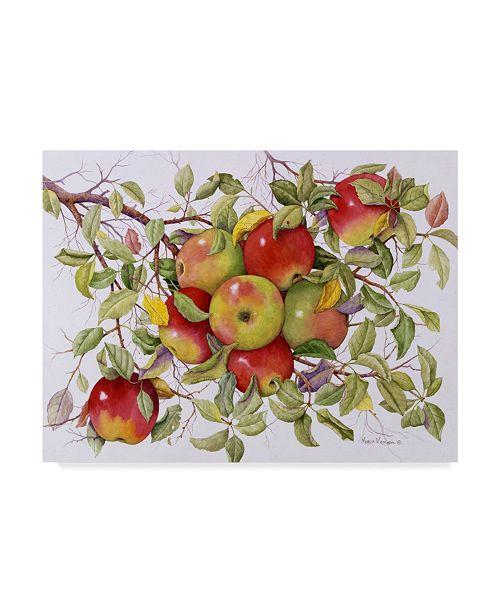 "Trademark Global Marcia Matcham Apples on a Branch Canvas Art - 37"" x 49"""