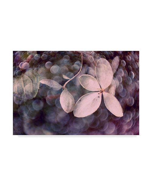 "Trademark Global Judy Stalus Purple Hydrangea Canvas Art - 37"" x 49"""