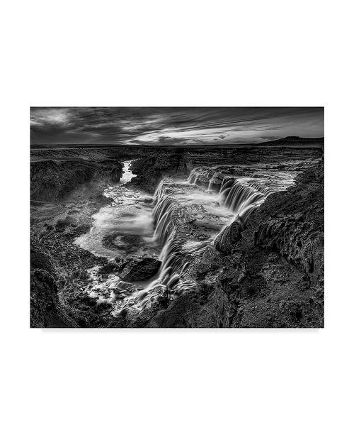 "Trademark Global David Drost Black and White Desert View II Canvas Art - 37"" x 49"""