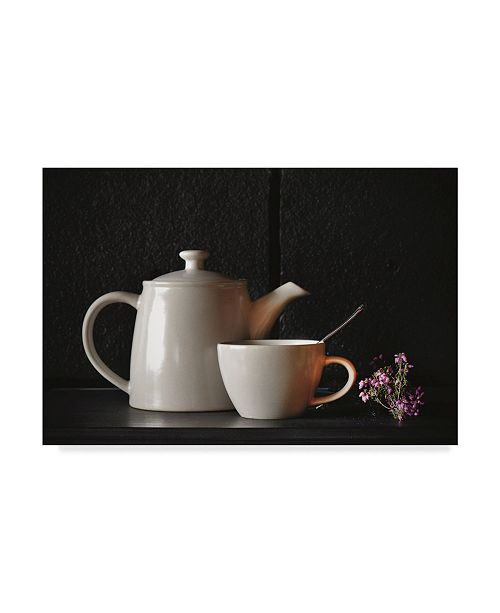 "Trademark Global Christine Sainte-Laudy Heat Moment Canvas Art - 37"" x 49"""