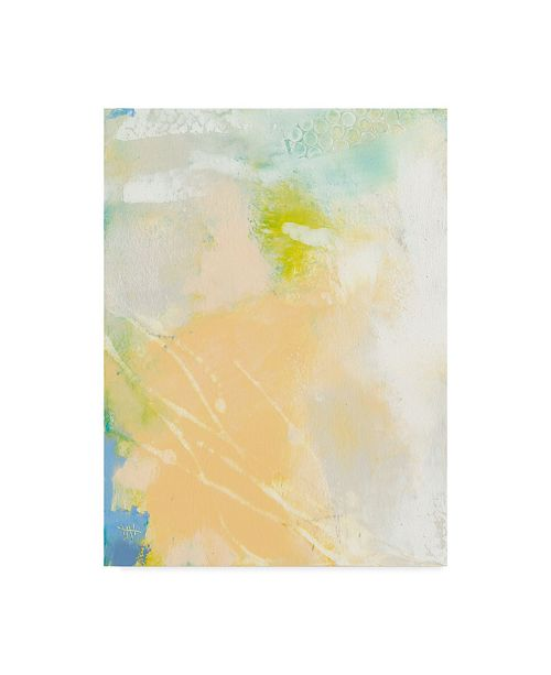 "Trademark Global Sue Jachimiec Pastel Lux I Canvas Art - 37"" x 49"""