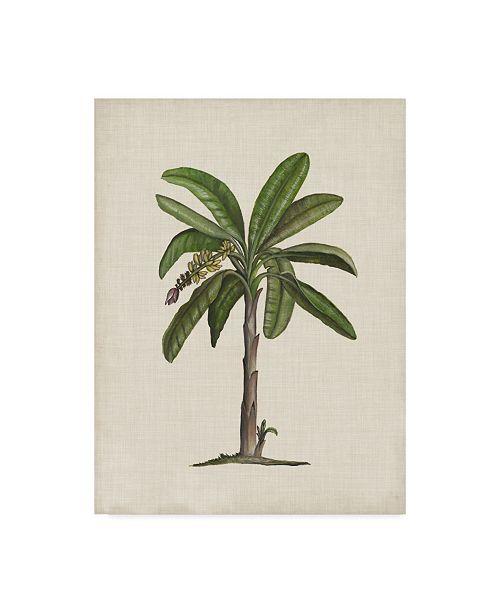 "Trademark Global Naomi Mccavitt British Palms II Canvas Art - 37"" x 49"""