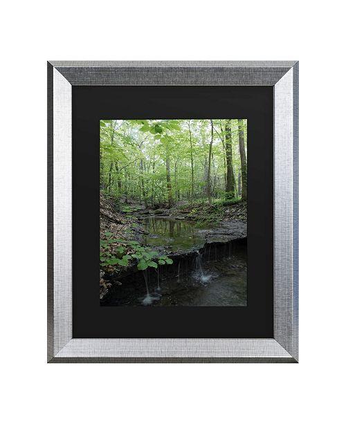 """Trademark Global Kurt Shaffer Tiny Forest Falls Matted Framed Art - 27"""" x 33"""""""
