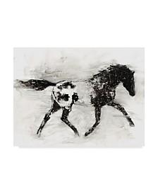 "Ethan Harper Rustic Appaloosa I Canvas Art - 15"" x 20"""