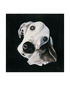 "Patsy Ducklow Max I Canvas Art - 20"" x 25"""
