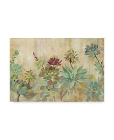 "Silvia Vassileva Rustic Succulent Garden Canvas Art - 15"" x 20"""