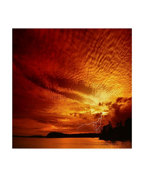 """Trademark Global Philippe Sainte-Laudy Red Storm Canvas Art - 15"""" x 20"""""""