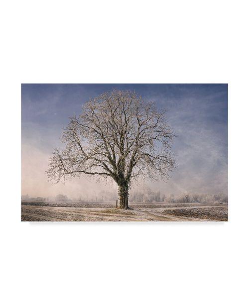 "Trademark Global Philippe Sainte-Laudy The Tree Fairy Tale Canvas Art - 15"" x 20"""