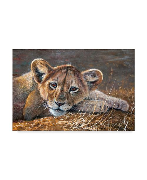 """Trademark Global Pip Mcgarry Young Lion Resting Canvas Art - 20"""" x 25"""""""