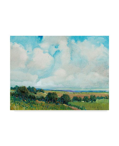 "Trademark Global Tim Otoole Looming Clouds I Canvas Art - 20"" x 25"""