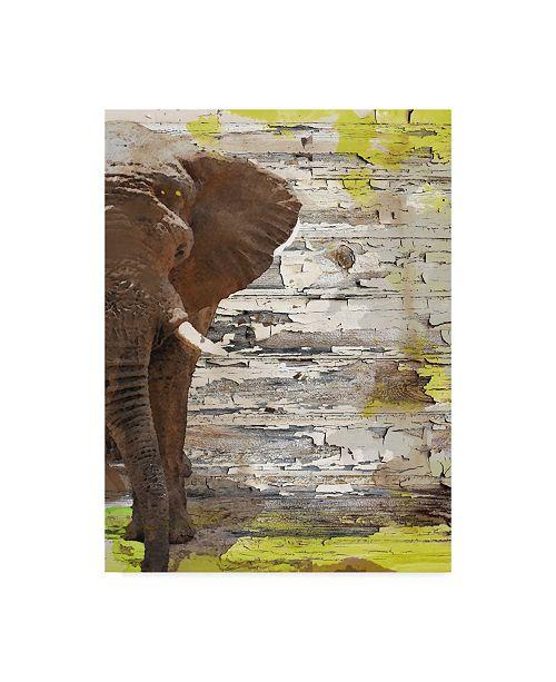 "Trademark Global Irena Orlov The Elephant I Canvas Art - 37"" x 49"""