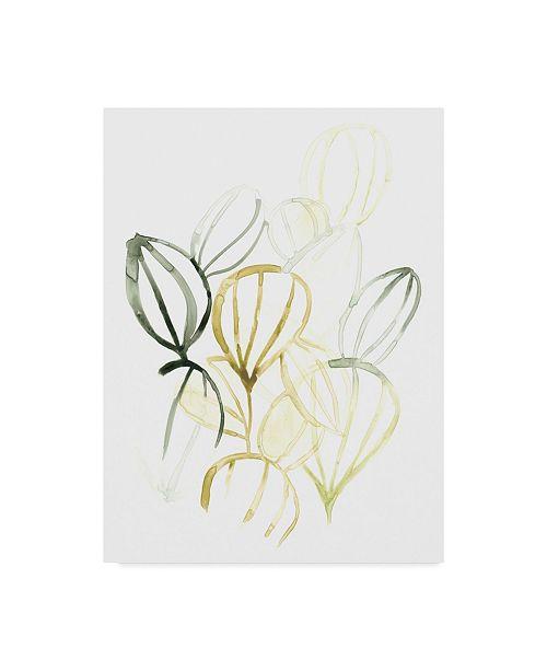 """Trademark Global June Erica Vess Seed Spectrum II Canvas Art - 37"""" x 49"""""""
