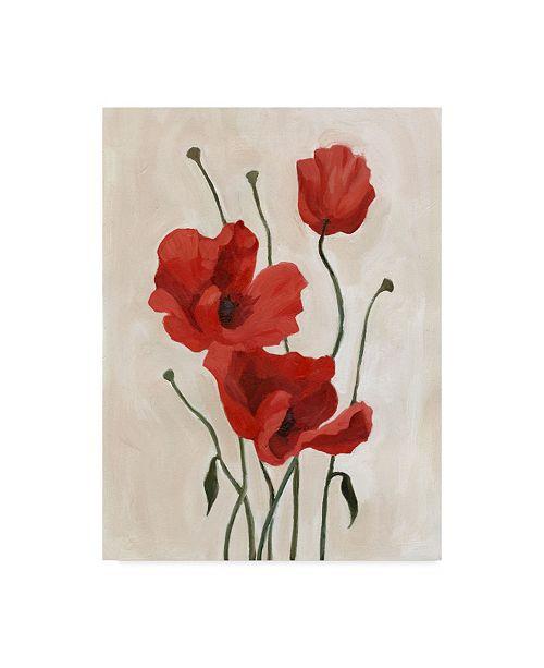 "Trademark Global Emma Scarvey Poppy Bouquet II Canvas Art - 20"" x 25"""