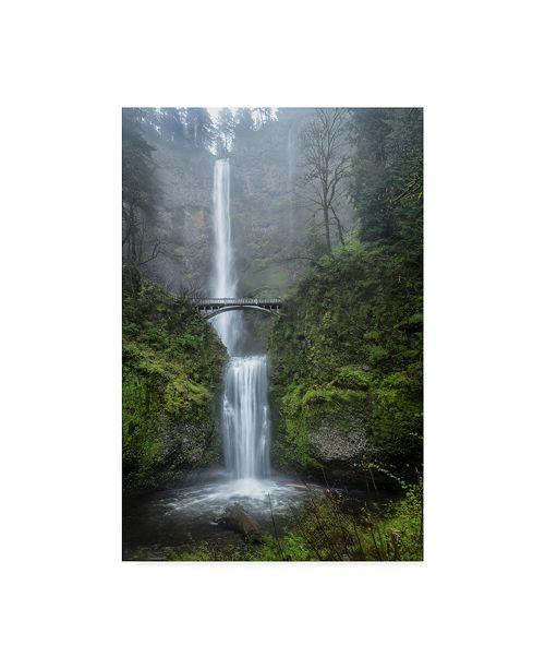 "Trademark Global Danny Head Dreamland Waterfall Canvas Art - 20"" x 25"""