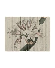 "Studio W Rustic Floral II Canvas Art - 15"" x 20"""