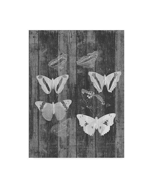 """Trademark Global Jennifer Goldberger Rustic Butterfly Chart I Canvas Art - 20"""" x 25"""""""