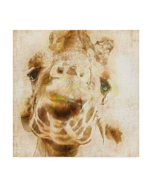 "Trademark Global Ryan Hartson-Weddle Inspektor IV Canvas Art - 20"" x 25"""