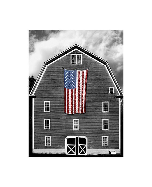 "Trademark Global James Mcloughlin Flags of Our Farmers XIX Canvas Art - 37"" x 49"""