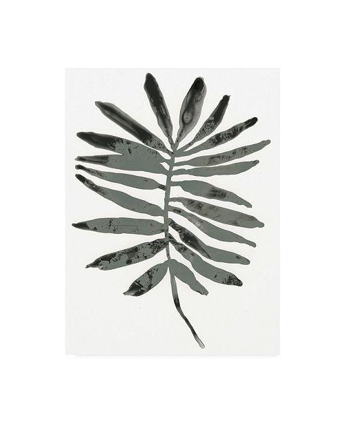 "Trademark Global June Erica Vess Foliage Fossil VII Canvas Art - 20"" x 25"""