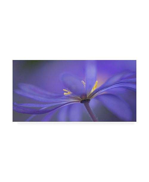 "Trademark Global Penny Myles Blue Waves Floral Canvas Art - 15"" x 20"""