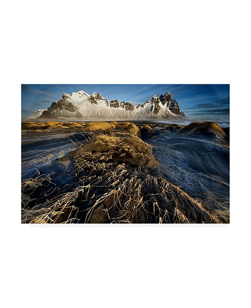 "Trademark Global Trevor Cole Dunes and Sea Interact Canvas Art - 15"" x 20"""