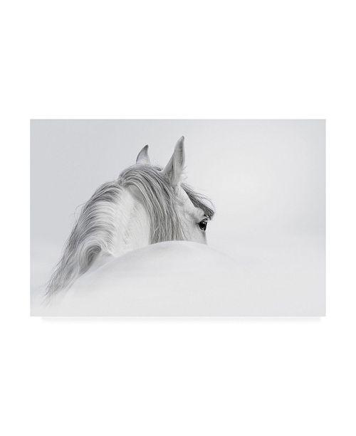 "Trademark Global PhotoINC Studio White Horse on White Canvas Art - 27"" x 33.5"""