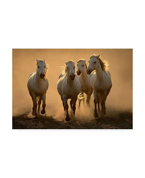 """Trademark Global Muriel Vekemans Quartet Canvas Art - 15.5"""" x 21"""""""