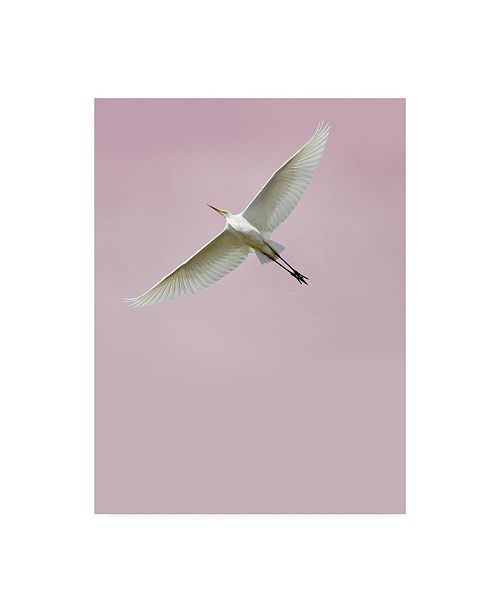 "Trademark Global Design Fabrikken In the Sky 2 Fabrikken Canvas Art - 36.5"" x 48"""