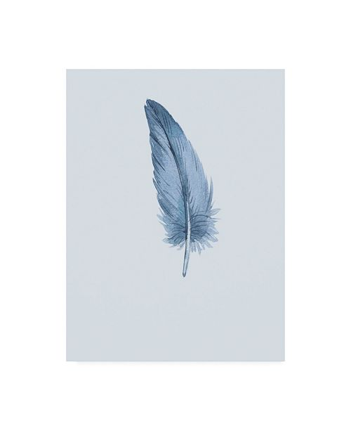 "Trademark Global Incado Feather 01 Canvas Art - 19.5"" x 26"""