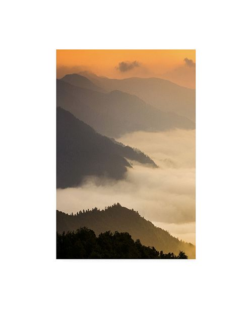 "Trademark Global PhotoINC Studio Dusty morning Canvas Art - 36.5"" x 48"""