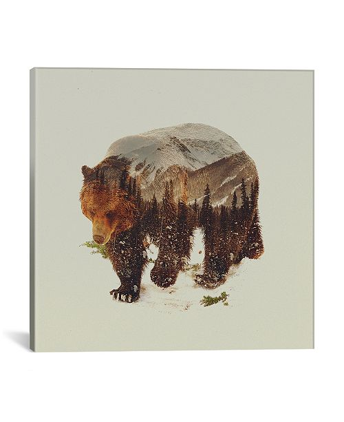 "iCanvas Bear I by Andreas Lie Wrapped Canvas Print - 18"" x 18"""