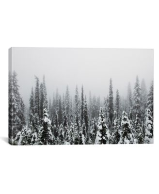 Trees Of Mt. Rainier by Christopher Kerksieck Wrapped Canvas Print - 40