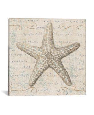 "Coastal Beauty by Lisa Audit Wrapped Canvas Print - 37"" x 37"""