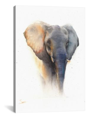 Elephant by Eric Sweet Wrapped Canvas Print - 60