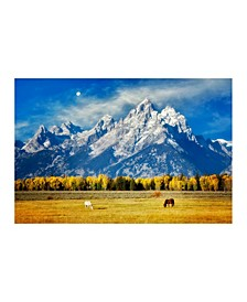 "Collection - Horses at Teton Mountains Canvas Art, 54"" x 36"""