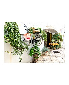 """- The Bicycle Wall Canvas Art, 18"""" x 24"""""""