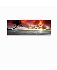 "Collection - Sunset Palm Canvas Art, 18"" x 58"""