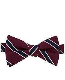 Men's Preppy Stripe Pre-Tied Silk Bow Tie & Outlined Silk Pocket Square Set