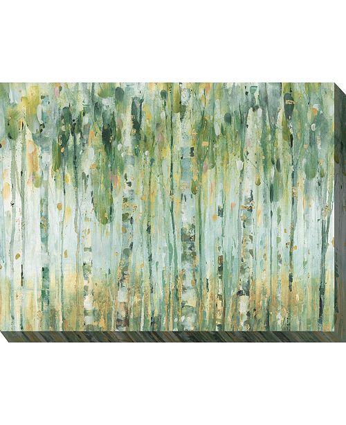 "West of the Wind Forest in Sage Indoor/Outdoor Art, 40"" x 30"""