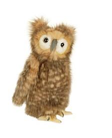 Youth Owl Plush Toy