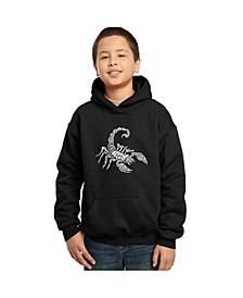 Boy's Word Art Hoodies - Types of Scorpions