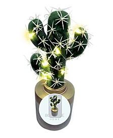 Fairy Light Cactus Desk Lamp