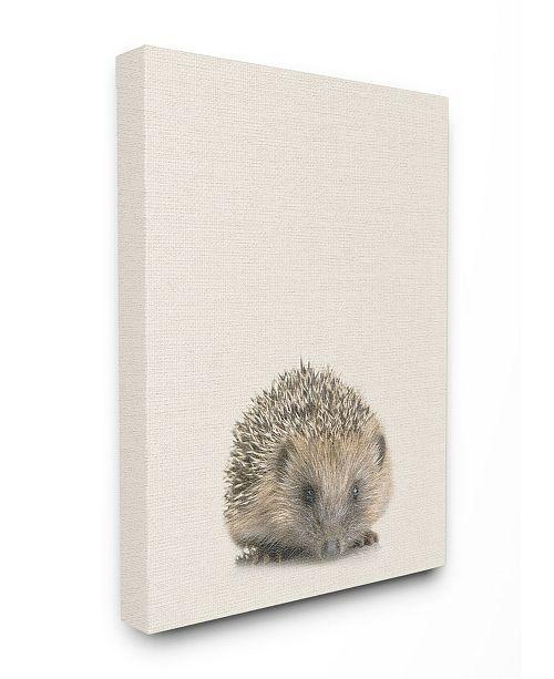"Stupell Industries Just A Cute Hedgehog Canvas Wall Art, 16"" x 20"""
