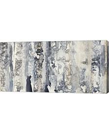 "Neutral Strata II by Jennifer Goldberger Canvas Art, 32"" x 16"""