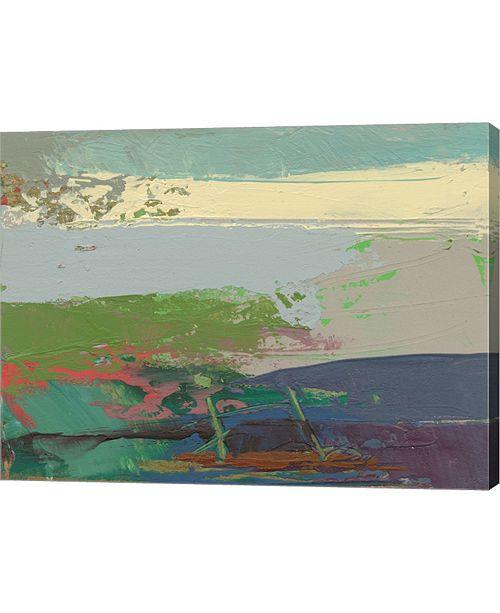 "Metaverse Ceide Study XIV by Grainne Dowling Canvas Art, 26.5"" x 20"""