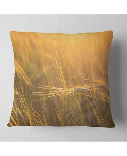 "Design Art Designart Wheat Field Close Up At Sunset Landscape Printed Throw Pillow - 16"" X 16"""