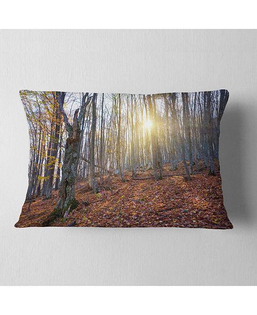 """Design Art Designart Setting Sun In Dense Fall Forest Modern Forest Throw Pillow - 12"""" X 20"""""""