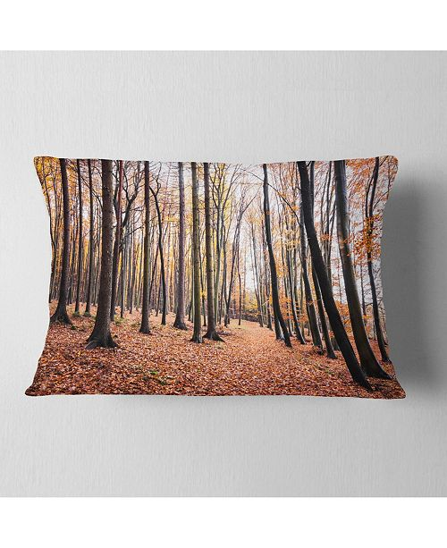 "Design Art Designart Bright Fall Forest With Clear Sky Modern Forest Throw Pillow - 12"" X 20"""