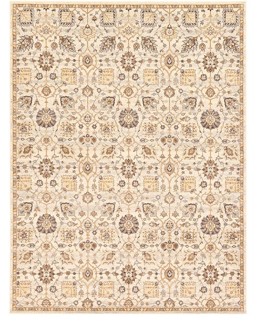 Bridgeport Home Wisdom Wis1 Ivory Area Rug Collection