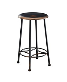 "Walton 24"" Counter Stool, Quick Ship"